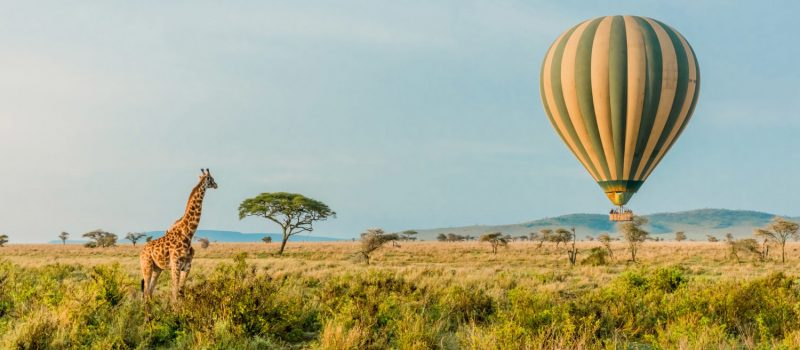 Why a Tanzania Safari